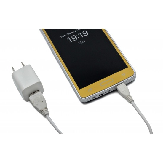 Cheetah Gold Smart Phone Rechargeable Stun Gun